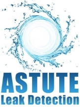 Astute Leak Detection